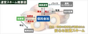パーム油農園投資スキーム